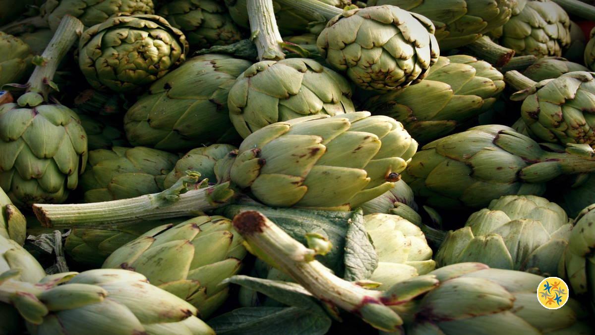 Meilleurs Légumes : 5 Éléments de Qualité Nutritionnelle..